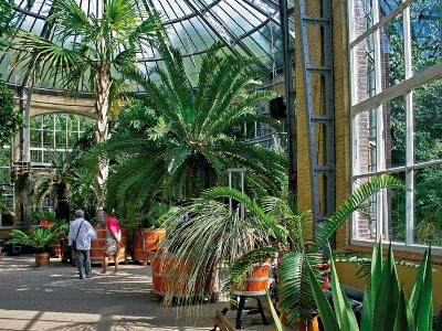 Hortus Botanicus Gardens 20 Off With Smartsave