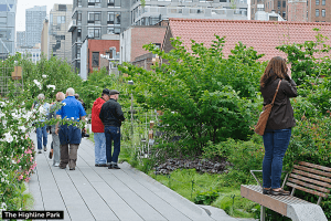 High Line and Meatpacking District
