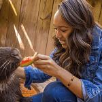 Animal Encounter Experiences