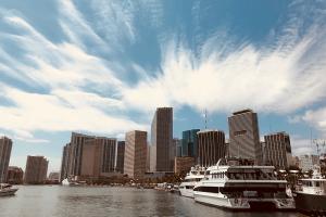 One Day Miami Tour