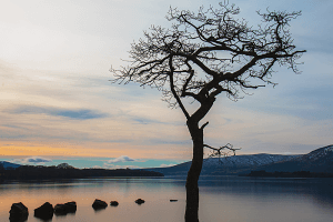 Loch Lomond tour from Glasgow